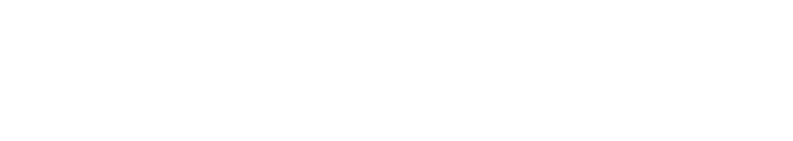 Universidad Carlos III de Madrid. Social council