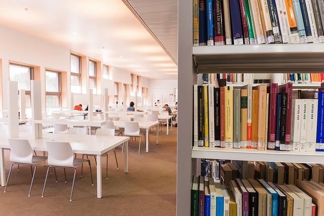 Digital library dissertation