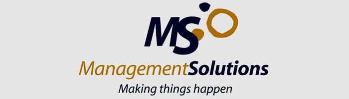 logotipo Management solutions