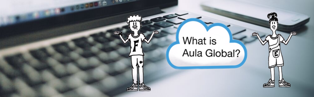 Get to know Aula Global